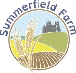 Summerfield Holidays